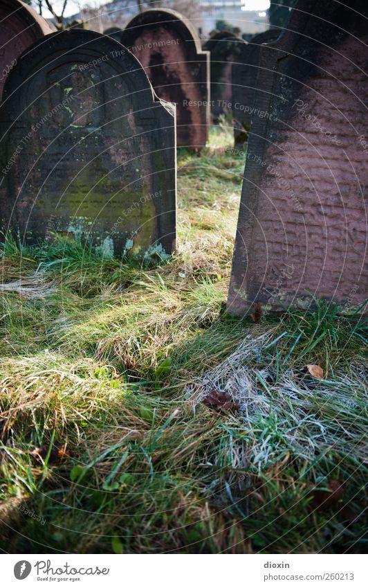 Frost auf den Gräbern alt Winter Tod kalt Gras Stein Traurigkeit Religion & Glaube Wetter Eis authentisch Schriftzeichen Trauer Sehenswürdigkeit