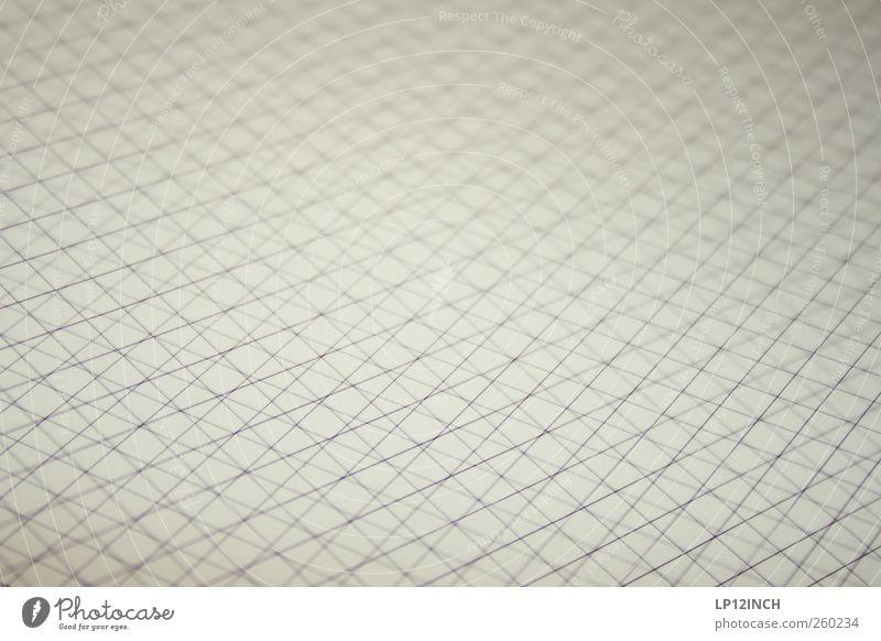 Oh Carolina grau Holz Linie Streifen Papier Quadrat durcheinander eckig kariert Schulunterricht kreuzen Mathematik Bildung Wissenschaften