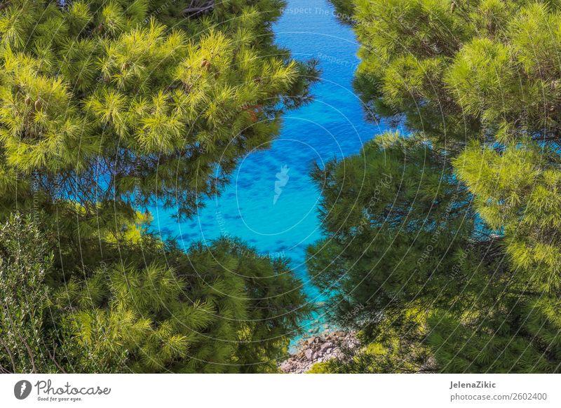 Himmel Natur Ferien & Urlaub & Reisen Sommer blau schön grün Landschaft Sonne Baum Meer Erholung Wald Strand natürlich Küste