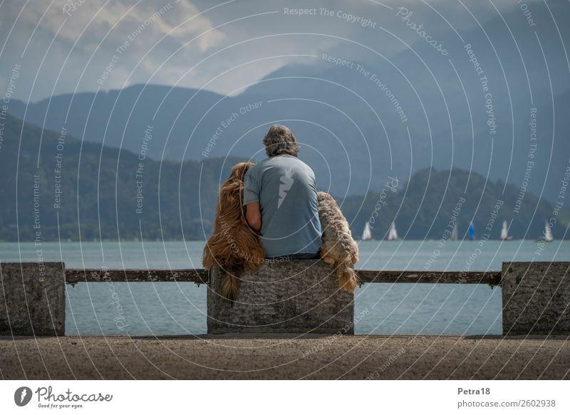 Freundschaft Ferien & Urlaub & Reisen Tourismus Ausflug Sommer maskulin Mann Erwachsene 1 Mensch 45-60 Jahre Tier Haustier Hund 2 Gefühle Stimmung Freude Glück