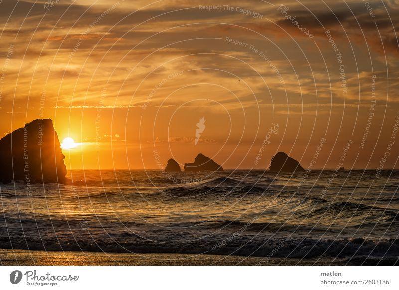 Untergang Natur Landschaft Himmel Wolken Horizont Sonnenaufgang Sonnenuntergang Sommer Schönes Wetter Felsen Wellen Küste Riff Meer glänzend Wärme blau orange