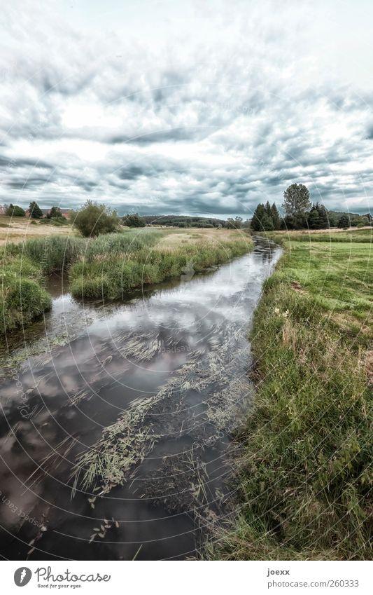 Der Garten Umwelt Landschaft Wasser Himmel Wolken Horizont Sommer Klima Wetter Schönes Wetter Feld Bach schön blau grün schwarz weiß ruhig Idylle Farbfoto