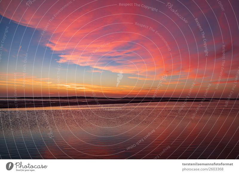 Sonnenuntergang im Wattenmeer Natur Sand Wasser Himmel Wolken Horizont Sonnenaufgang Herbst Wetter Schönes Wetter Wellen Küste Seeufer Strand Nordsee Meer