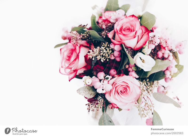 Extract bridal bouquet from above Pflanze Liebe Blumenstrauß Hochzeit Dekoration & Verzierung Rose rosa Farbfoto Innenaufnahme Studioaufnahme Textfreiraum links