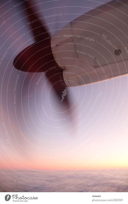 fliegen Himmel Ferien & Urlaub & Reisen Wolken Bewegung Horizont Verkehr Flugzeug Geschwindigkeit Luftverkehr Technik & Technologie Verkehrswege Motor