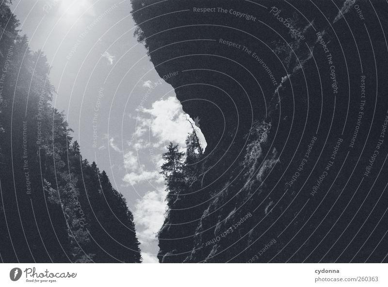Im tiefen Tal Umwelt Natur Landschaft Himmel Sonnenlicht Sommer Schönes Wetter Baum Felsen Berge u. Gebirge Schlucht Abenteuer ästhetisch einzigartig entdecken