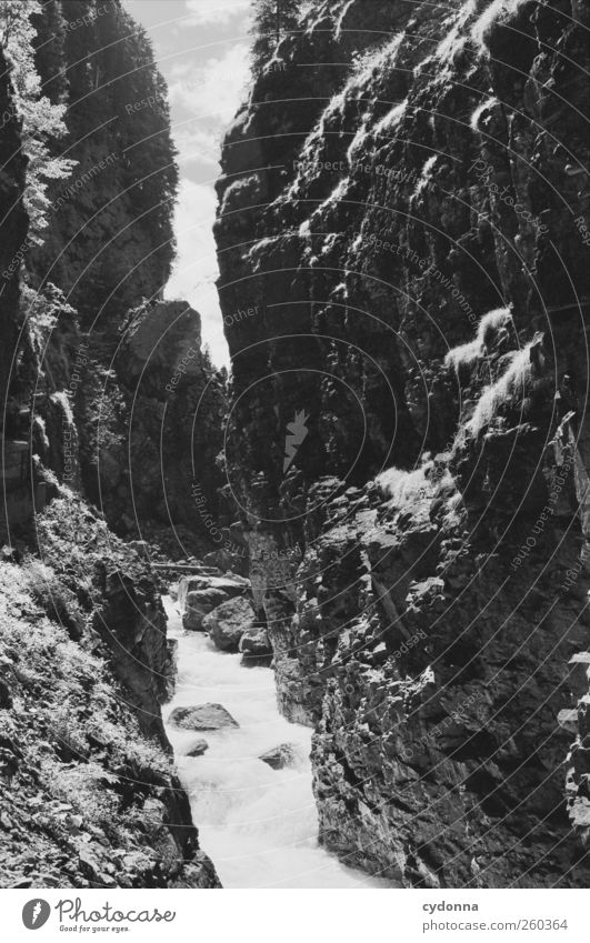 wilde Natur Umwelt Landschaft Wasser Sommer Schönes Wetter Felsen Berge u. Gebirge Schlucht Fluss einzigartig Idylle Leben ruhig schön träumen Umweltschutz