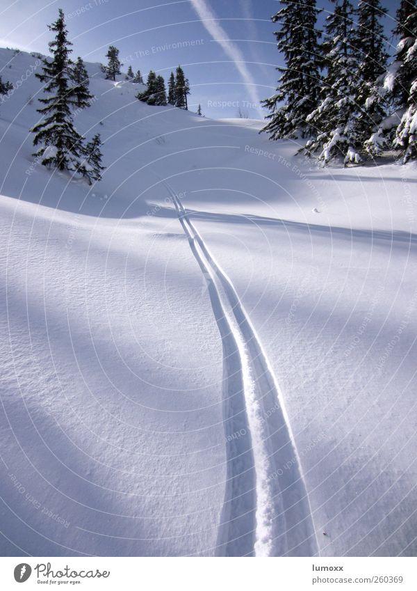 deep powder Himmel Natur blau weiß Baum Winter Berge u. Gebirge kalt Schnee Sport Glück Linie fantastisch Schönes Wetter Sauberkeit Streifen