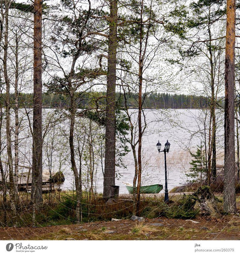 finnischer Regentag Natur Wasser Ferien & Urlaub & Reisen Pflanze Sommer Strand Wolken Erholung Holz Küste See Wellen Schwimmen & Baden warten Tourismus