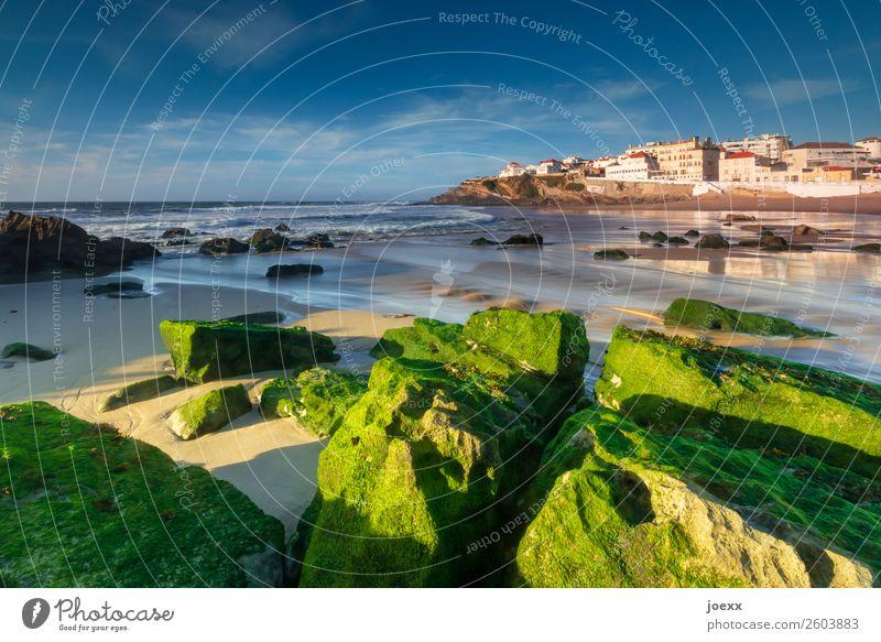 Grüne Felsen mit Algen am Atlantik-Strand mit Fischerdorf im Hintergrund Ferien & Urlaub & Reisen Meer Portugal Himmel Sonnenlicht Sommer Schönes Wetter Wellen