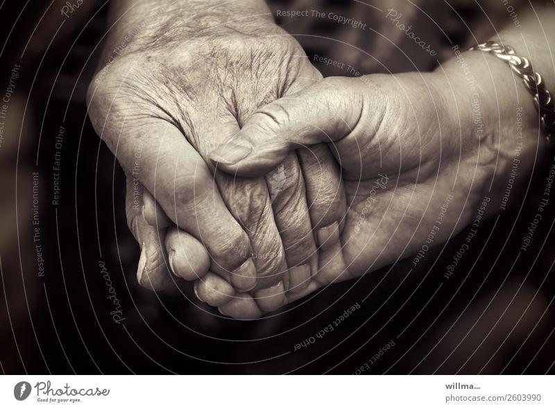 Verbundenheit, zwei Senioren halten sich an den Händen Hand Alter Paar Partner Mensch Leben berühren Zusammensein Gefühle Zufriedenheit Vertrauen Geborgenheit
