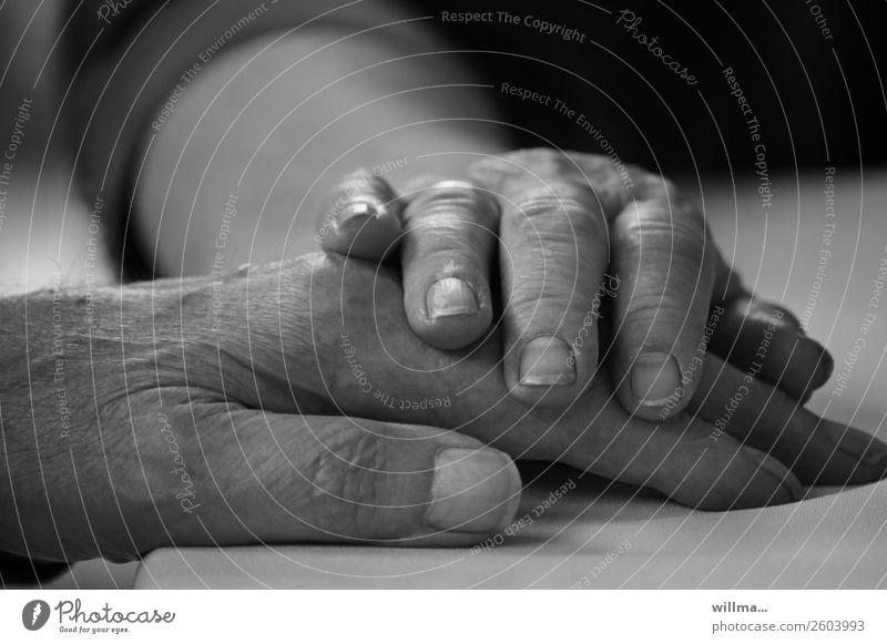 Hände eines alten Ehepaares. Zusammenhalt, Trost und Nähe - in guten wie in schlechten Zeiten Hand 2 Hände Alter Paar Partner Senior Mensch Leben berühren