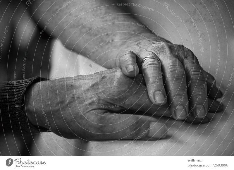Seniorin legt ihre Hand vertrauensvoll auf die Hand ihres Mannes 2 Hände Alter Paar Partner Mensch alt Leben 60 und älter berühren Gefühle Vertrauen Schutz
