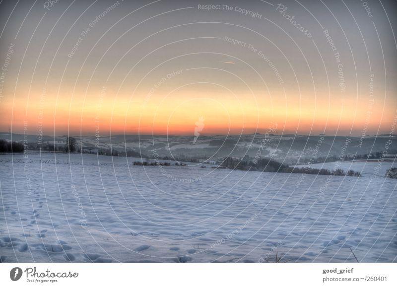 -15°C Umwelt Natur Landschaft Pflanze Tier Urelemente Erde Horizont Winter Klima Eis Frost Schnee blau braun grau stagnierend Stimmung Wiese Feld