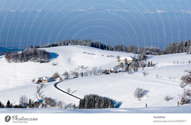 Blick vom Schauinsland bei Freiburg / Alpensicht Himmel Ferien & Urlaub & Reisen Natur schön Landschaft Sonne Baum Erholung ruhig Wald Winter Ferne