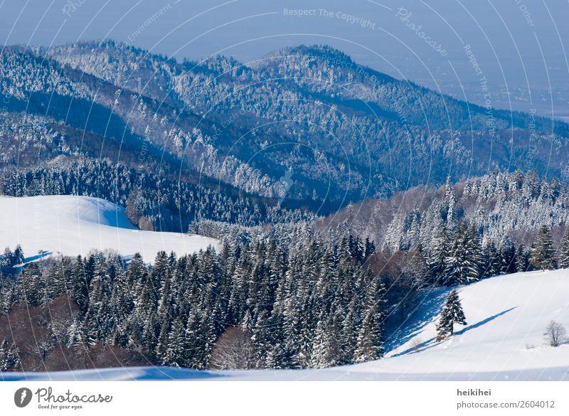 Wunderschöner Schwarzwald Ferien & Urlaub & Reisen Tourismus Ausflug Abenteuer Ferne Freiheit Winter Schnee Winterurlaub Berge u. Gebirge wandern Natur