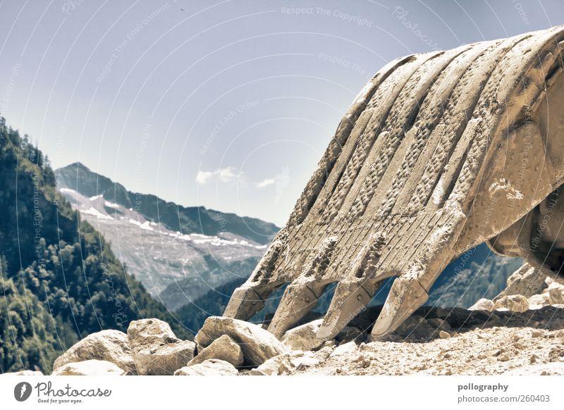 anbaggern... Umwelt Natur Landschaft Erde Sand Himmel Wolkenloser Himmel Sommer Schönes Wetter Schnee Baum Wildpflanze Hügel Felsen Alpen Berge u. Gebirge