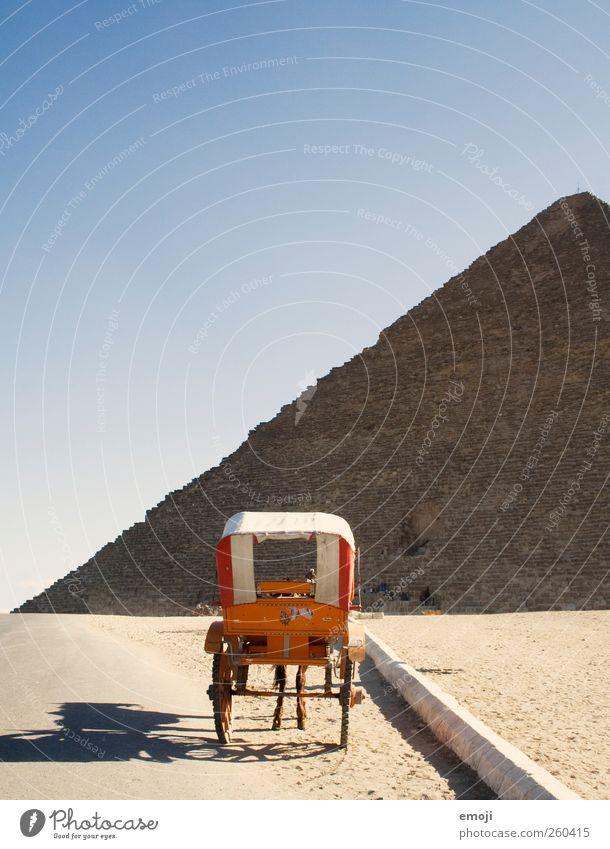 Kutsche mit Beinen Himmel Natur Tier Umwelt Landschaft außergewöhnlich Pferd Wüste Dürre Nutztier Wolkenloser Himmel Pyramide kutschieren