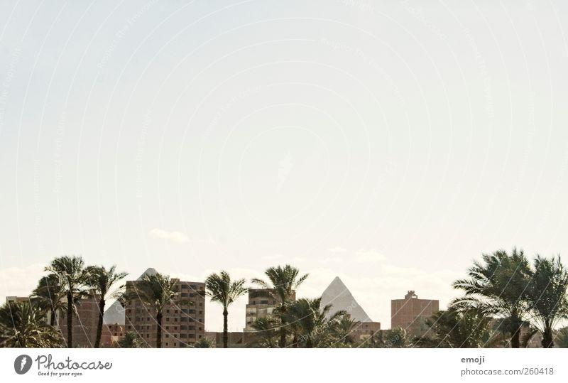 Kultur-Kollision x 3 Natur Stadt Haus Umwelt Landschaft Hochhaus außergewöhnlich Wandel & Veränderung Bauwerk historisch Palme Hauptstadt Grünpflanze Stadtrand