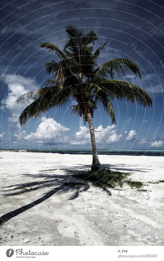 zum Aufwärmen Natur blau Wasser Ferien & Urlaub & Reisen Meer Strand Wolken Ferne Freiheit Sand Wärme Glück träumen Ausflug Abenteuer Tourismus