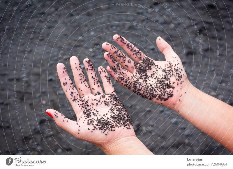 Frauenhände mit schwarzem Sand Lifestyle Reichtum Freude Sinnesorgane Erholung ruhig Ferien & Urlaub & Reisen Erwachsene Hand 18-30 Jahre Jugendliche