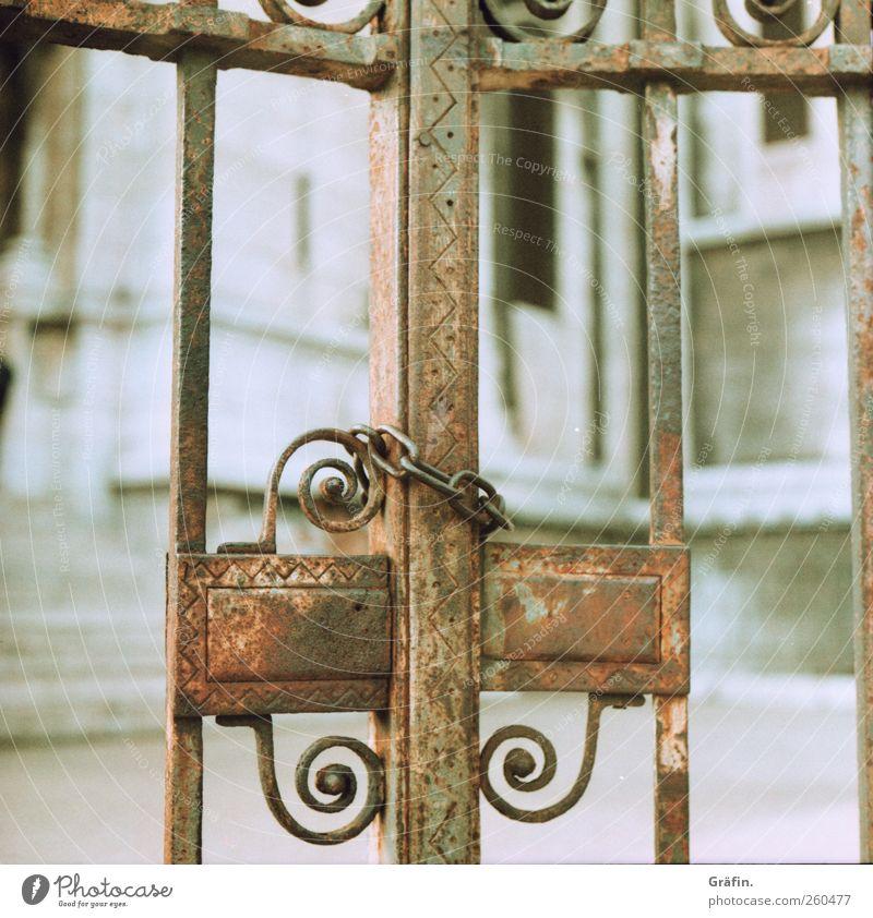 Verschlossen Dekoration & Verzierung Tor Metall Rost Schloss alt authentisch braun weiß Sicherheit Schutz Verschwiegenheit Verbote Kette Eisen geschlossen