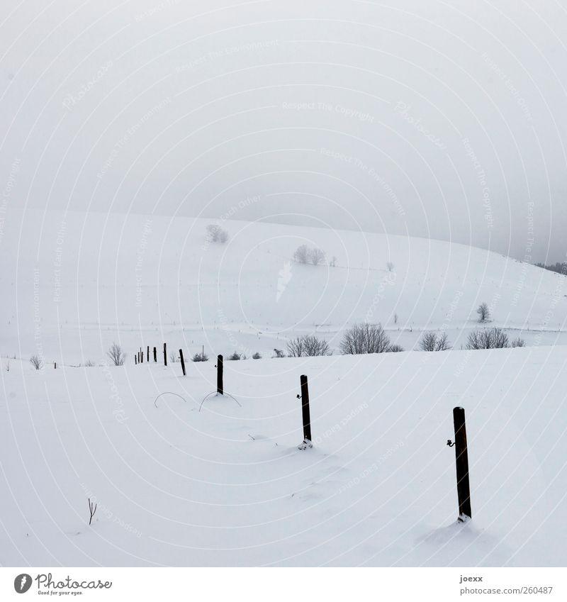 Orientierung Landschaft Luft Winter Wetter schlechtes Wetter Nebel Eis Frost Schnee Baum Feld Hügel Berge u. Gebirge kalt schwarz weiß Zaunpfahl