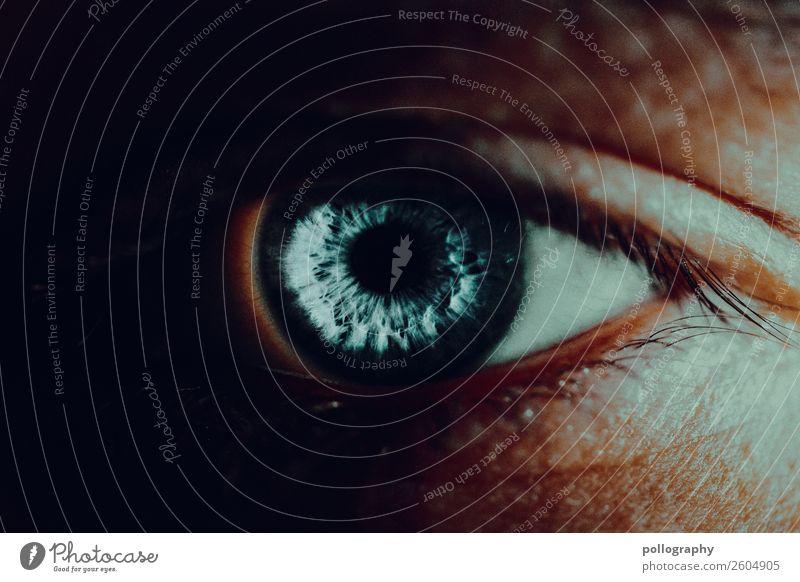 Auge maskulin 1 Mensch Kunst Blick authentisch glänzend schön blau türkis elegant Farbfoto Innenaufnahme Studioaufnahme Detailaufnahme Experiment