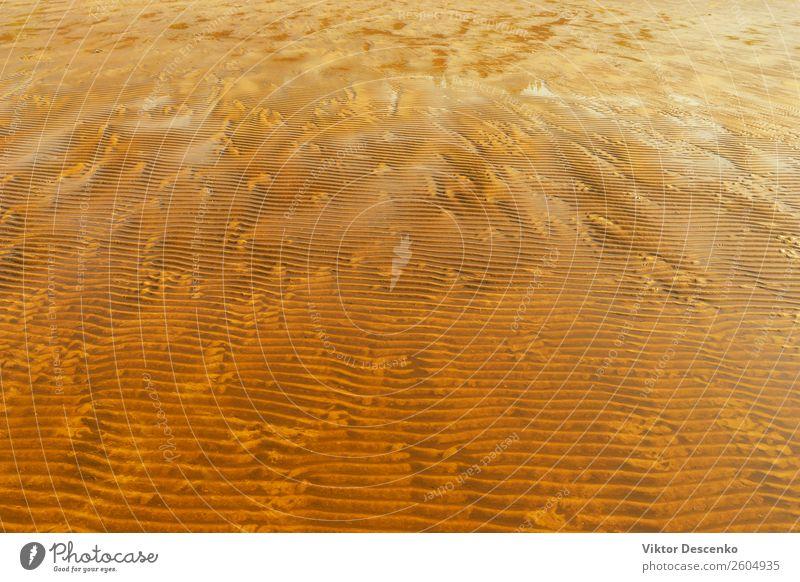Sommer Meer Strand Herbst Küste Bewegung Sand Stimmung Wetter Wellen Wind Jahreszeiten Abenddämmerung Kanal Glätte Klippe