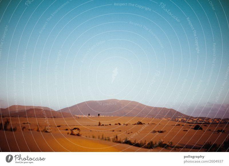 desert Ferien & Urlaub & Reisen Tourismus Ausflug Abenteuer Ferne Freiheit Sightseeing Sommer Sommerurlaub Natur Landschaft Erde Sand Himmel Wolkenloser Himmel