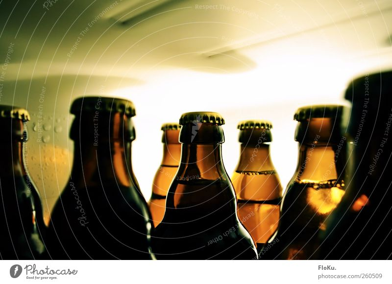 Vorfreude Lebensmittel Getränk Alkohol Bier Flasche Nachtleben Bar Cocktailbar Glas kalt lecker nass braun gelb grün Hemmungslosigkeit Alkoholsucht Bierflasche