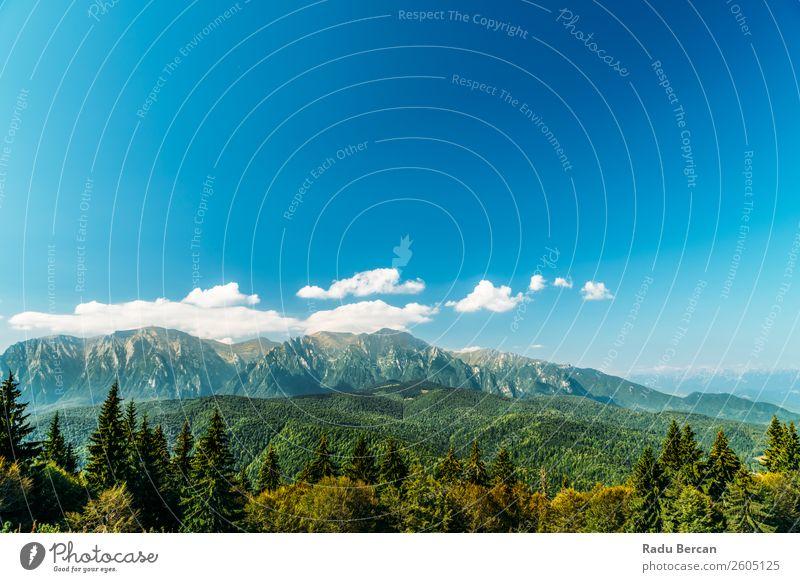 Karpatenlandschaft in Rumänien Berge u. Gebirge Landschaft schön Natur Wald Panorama (Bildformat) Himmel grün Aussicht Ferien & Urlaub & Reisen Hintergrundbild