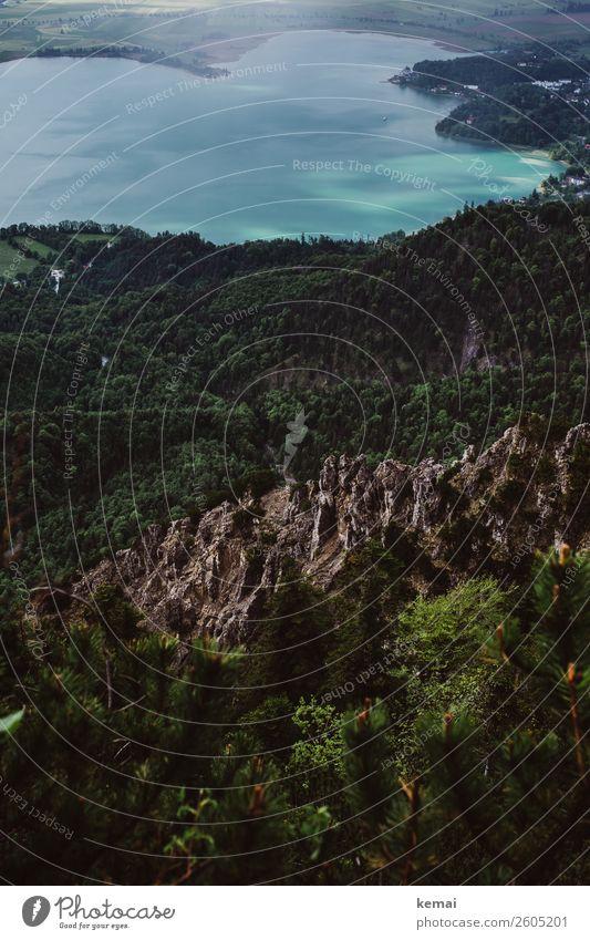 Kochelsee mit Fels Ferien & Urlaub & Reisen Natur blau grün Wasser Landschaft Erholung Wald Ferne Berge u. Gebirge Freiheit See Felsen Ausflug Freizeit & Hobby