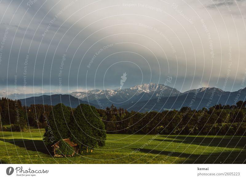Sommerabend in Bayern Himmel Ferien & Urlaub & Reisen Natur grün Landschaft Baum Erholung Wolken ruhig Ferne Berge u. Gebirge Wärme Wiese Freiheit Felsen