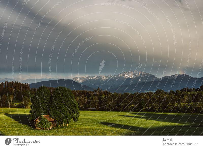 Abendlicht harmonisch Wohlgefühl Zufriedenheit Erholung ruhig Freizeit & Hobby Ferien & Urlaub & Reisen Ausflug Ferne Freiheit Natur Landschaft Himmel Wolken