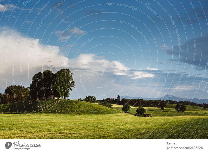 Hügelland harmonisch Wohlgefühl Zufriedenheit Erholung ruhig Freizeit & Hobby Ferien & Urlaub & Reisen Ausflug Abenteuer Freiheit Natur Landschaft Himmel Wolken