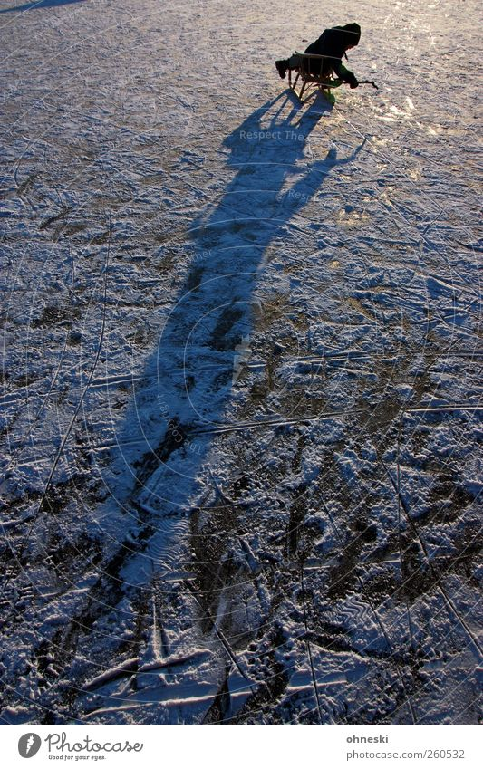 Eiszeit Mensch Kind Winter kalt See Kindheit Coolness Frost Urelemente Schönes Wetter 8-13 Jahre Teich Schlitten Eisfläche