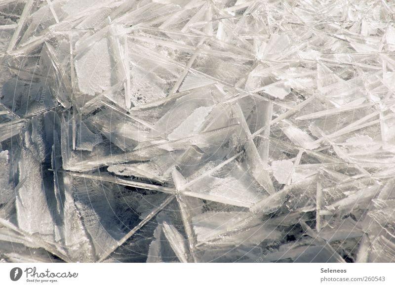 eiskalt Winter Schnee Winterurlaub Umwelt Natur Landschaft Wasser Klima Wetter Eis Frost Linie frieren frisch Farbfoto Außenaufnahme Nahaufnahme Detailaufnahme