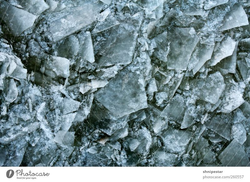 Spröde Lippen ... Natur blau Wasser Winter kalt Umwelt Schnee Berlin grau Design Wetter Eis Kraft fantastisch kaputt Urelemente