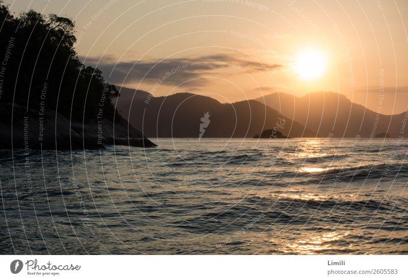Der Sonne entgegen Himmel Natur Ferien & Urlaub & Reisen Pflanze Wasser Landschaft Meer Berge u. Gebirge Küste Tourismus Freiheit Felsen Horizont Wellen Insel