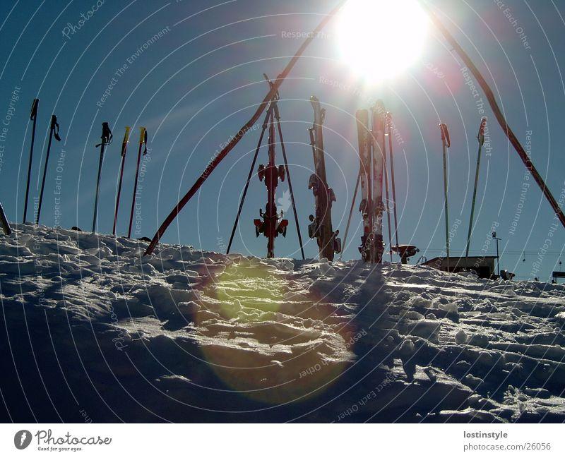 skifun Himmel Sonne Winter Sport Schnee Skifahren