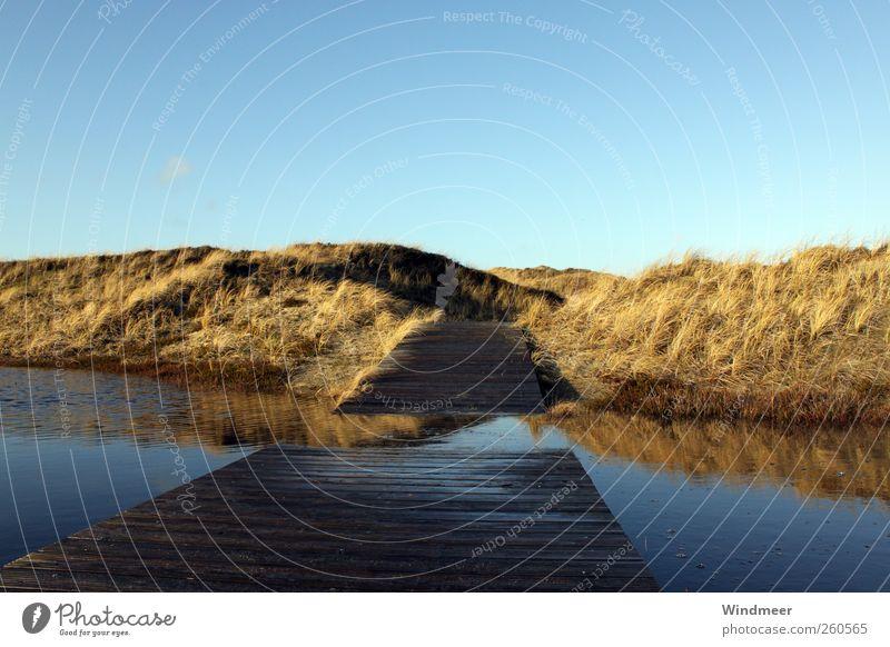 Gummistiefelweg Erholung ruhig Ferien & Urlaub & Reisen Tourismus Ausflug Freiheit Sonnenbad Strand Meer Insel wandern Natur Landschaft Wasser Himmel