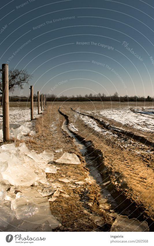 Eiszeit Umwelt Natur Erde Sand Wasser Wolkenloser Himmel Horizont Sonnenlicht Winter Klima Klimawandel Wetter Schönes Wetter Frost Schnee Gras Feld Fußweg kalt