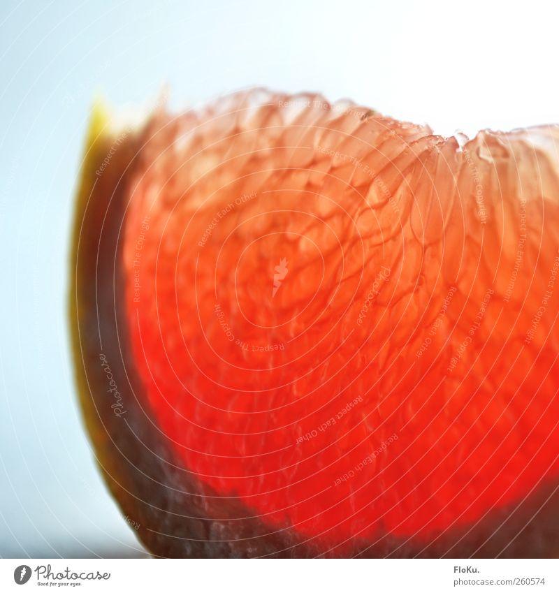 Fit für den Winter weiß rot Ernährung Leben Lebensmittel hell Gesundheit rosa Frucht frisch süß lecker Bioprodukte Scheibe Diät Vegetarische Ernährung