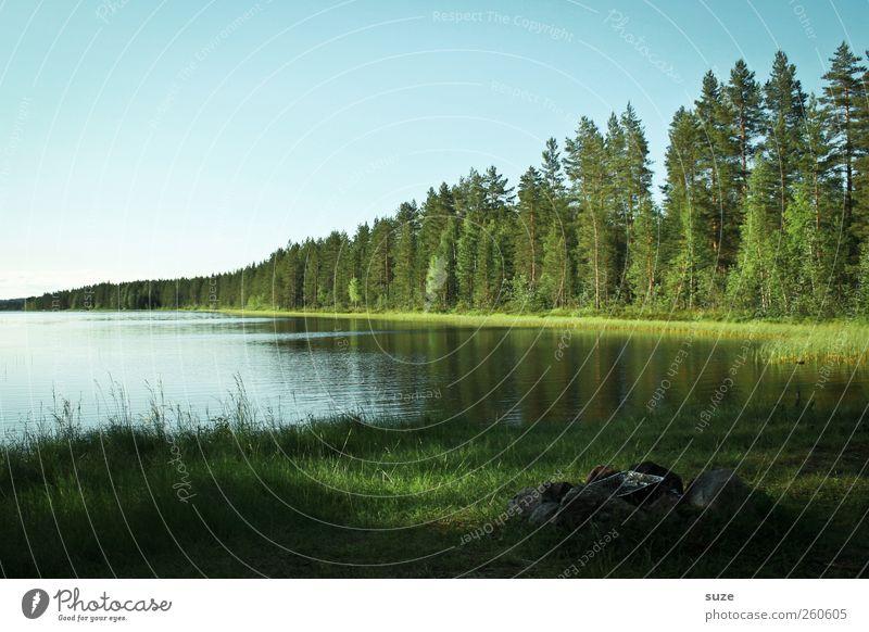 Grillplatz Erholung ruhig Umwelt Natur Landschaft Wasser Himmel Wolkenloser Himmel Klima Klimawandel Wetter Schönes Wetter Wiese Wald Seeufer grün Idylle