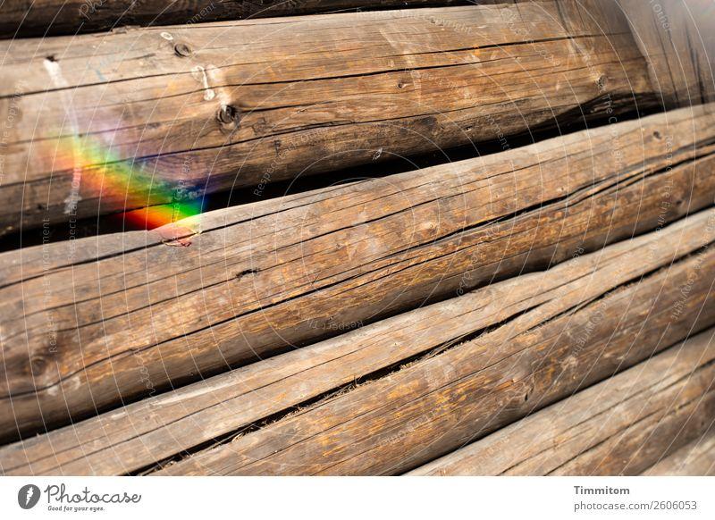 Blockhütte, Teilansicht Holzhütte Mauer Wand Baumstamm einfach braun Gefühle Neugier Prisma Spektralfarbe Riss Farbfoto Außenaufnahme Menschenleer Tag