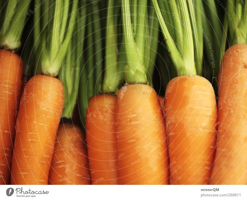 Hat Du Möhrchen? grün Lebensmittel Kunst orange ästhetisch viele Gemüse Gesunde Ernährung Stengel Ernte lecker Möhre Erntedankfest vitaminreich