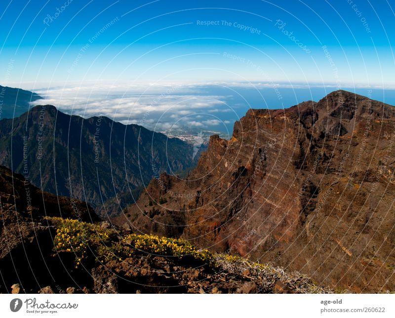 Ach, könnt ich jetzt fliegen... Natur blau weiß grün rot Pflanze Sommer Ferne gelb Umwelt Landschaft Berge u. Gebirge grau träumen braun Zufriedenheit