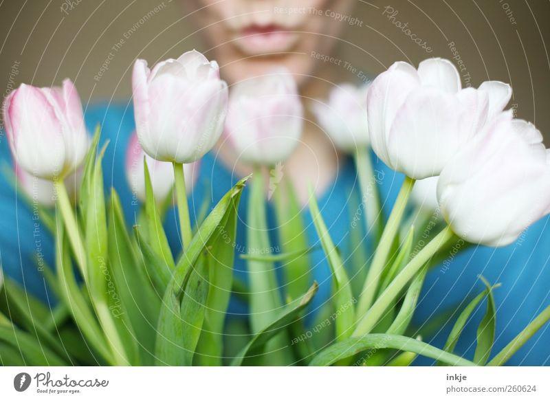 1 Kuss und viele Blumen für Dich! Freude Flirten Valentinstag Muttertag Geburtstag Leben Mund Lippen Mensch Pflanze Frühling Sommer Tulpe Blüte Blumenstrauß