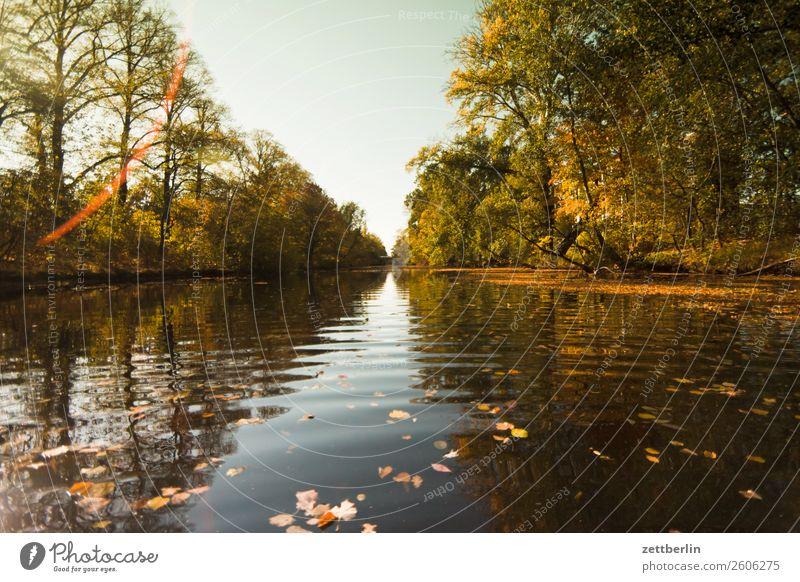 Alter Berlin-Spandauer Schifffahrtskanal Fluss Herbstlaub Kanal Paddeln Rudern See Strömung Teich Wasser Wasseroberfläche wasserwandern spandau Bootsfahrt